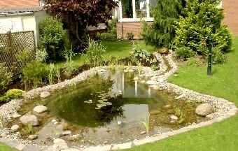 Kleinerer Gartenteich mit Quellstein für Sauerstoff und ...
